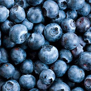 Moras/ Blueberries